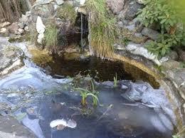 stewart mineral springs 1